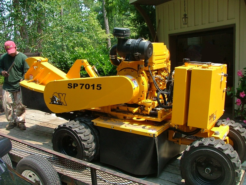 Stump Grinding Lexington SC